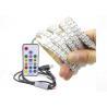 Waterproof Usb Rgb Led Light Strip Flexible WS2812 IC With RF 17 Key for sale