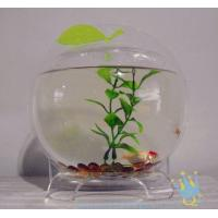 Wholesale Plastic modern acrylic fish tank from china suppliers