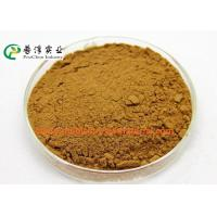 Wholesale Anti Histamine Apple Natural Plant Extracts 25% Quercetin For Preventing Cancer from china suppliers