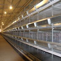 Wholesale High Quality Cage Mesh Material And Chicken Use Uganda Layer Farm Chicken Cage For Sale from china suppliers
