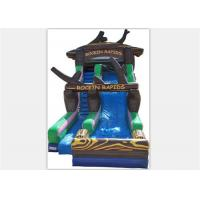 Quality Popular Inflatable Water Slide ,  Commercial Inflatable Water Slide With Tree Shape for sale