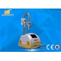 Wholesale Cryo Fat Dissolved Weight Loss Coolsculpting Cryolipolysis Machine from china suppliers