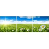 Wholesale 3 panel square canvas prints with bluesky whitecloud from china suppliers