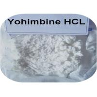 Wholesale 99% Purity Male Enhancement Drugs , CAS 65-19-0 Yohimbine HCL Powder White Powder from china suppliers
