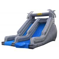 Wholesale Double Slide Way Commercial Inflatable Slide Gray PVC Outside from china suppliers