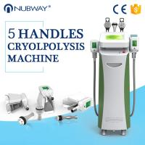 Buy cheap Popular Fat freezing /cryolipolysis slimming machine/criolipolisys machine from wholesalers