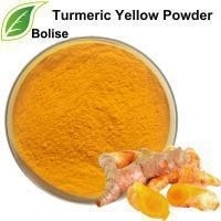 Wholesale Natural Yellow Turmeric Curcumin Extract Powder from china suppliers