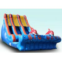 Wholesale Backyard Large Wave Inflatable Slide For Kids Customized Size And Color from china suppliers