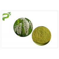 China Flower Bud Natural Energy Supplements Vitamin P Powder Rutin Of Sophora Japonica Extract on sale