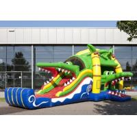 Wholesale Crocodile Jumping Castle Inflate Combo Outdoor With CE / UL Blower from china suppliers