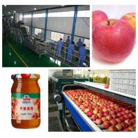 China Small Capacity Apple Pear juice and jam  Processing Plant SS304 for sale