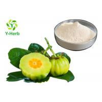 China HCA Weight Loss Supplement Powder 50% 60% Hydroxycitric Acid Garcinia Cambogia Extract for sale