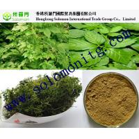 Wholesale gynostemma gypenosides for sleep --gynostemma extract from china suppliers