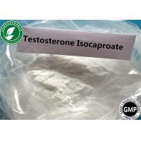 Buy cheap Legit  White powder Anabolic Steroid Testosterone Isocaproate  239-307-1 from Wholesalers