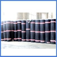China SBS/APP bitumen waterproof membrane on sale