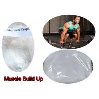 Quality 99% Anabolic Pure Testosterone Steroid Powder Testosterone Propionate For Muscle Building  for sale