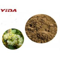 Wholesale YIDA GMP Certification Dodder Seed Extract Powder Remedy Sexual Problems from china suppliers
