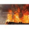 Wholesale Custom Nano Fire Rated Masterbatch , Inorganic Flame Retardants PET Masterbatch from china suppliers