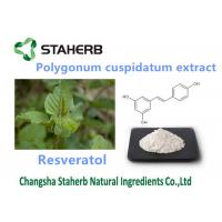 Wholesale Polygonum Cuspidatum Pure Natural Plant Extracts Resveratol 98% For Anti - Age from china suppliers