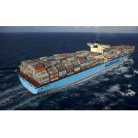 Wholesale Global Free Shipping From Shanghai / Shenzhen (ZIM / WHL / YML / MSK / HPL) from china suppliers