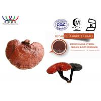 China High Standard Ling Zhi Reishi Mushroom Fruiting Body Extract For Sleep Improvement on sale