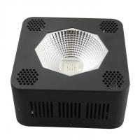 Wholesale Horticulture Indoor Cree Led Grow Lights For Vegetative Growth And Seedling from china suppliers