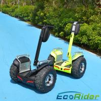 Wholesale 19 Inch 2 Wheel Electric Scooter 2000w Outdoor Short - Distance Travel from china suppliers