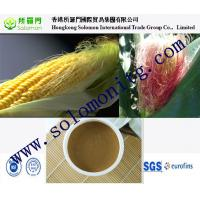Quality High quality 70%-90% Beta-sitosterol Corn Silk Extract --Zea mays L. -corn silk extract for sale