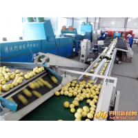Wholesale Lemon juice Processing line Machinery in Silver Color CFM-FD-200 from china suppliers