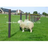 Wholesale Hot Dipped Galvanized Field Fence , High Tensile Woven Wire Fence Rolls from china suppliers