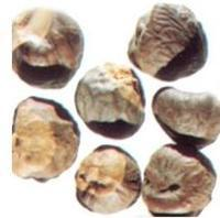 Wholesale Horse Chestnut Extract from china suppliers