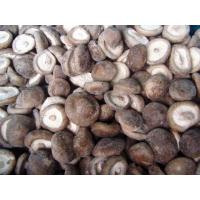 China Frozen Mushroom Shiitake on sale