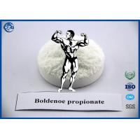 Wholesale Muscle Building Steroids Hormone Powder , 99% Purity Boldenone Propionate from china suppliers