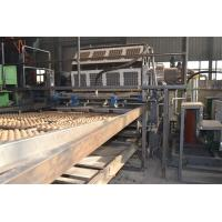 China Large Capacity Waste Paper Pulp Moulding Machine For Egg Packaging Carton Making on sale