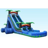 Wholesale 24Ft Wild Splash Slide , Blue Cliff Jungle Inflatable Double Lane Slide from china suppliers