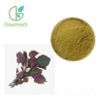 China Natural Plant Extract Powder Perilla Leaf Extract 80 Mesh Brown Yellow Fine Powder on sale