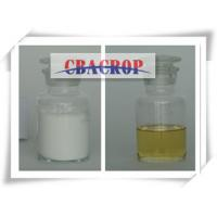 Wholesale Alpha-cypermethrin97%TC, 10%EC , 5%EC, 5%WP from china suppliers