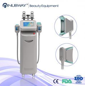 Buy cheap Cryolipolysis cavitation, Multipolar RF cryolipolysis machine from wholesalers