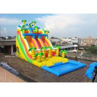 Wholesale Jungle Inflatable Water Slide With Pool , Commercial Inflatable Water Slide For Playground from china suppliers
