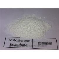 China 99.5% Purity USP Standard Steroid Testosterone Enanthate CAS 315-37-7 for Bodybuilding and Muscle Gain on sale