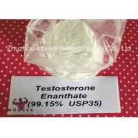 Wholesale Keeping Young Anabolic Steroid Test E Steroids Testosterone Enanthate CAS 315-37-7 from china suppliers