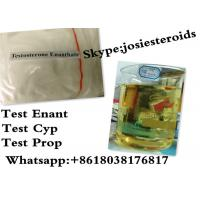 Buy cheap Normal Testosterone Enanthate Injection Testosterone Raw Powder For Women CAS 315-37-7 from Wholesalers