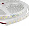 Waterproof Ip68 Flexible LED Strip Light, 10mm 5050 SMD LED Strip Lights 30 leds/m for sale