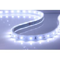 New Luce LED Strip underwater waterproof fish tank SMD 3528 led strip light ip68 12v warm white cold white Luce LED Stri for sale