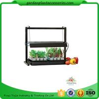 Wholesale Countertop Grow Light Garden Starter Kit / Plant Starter Kit With Seed Starting Trays from china suppliers