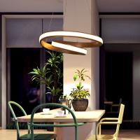 Wholesale Modern Drop down pendant lights For Indoor Home Lighting Fixtures (WH-AP-11) from china suppliers