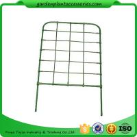 Wholesale Green Color Garden Flower Trellis from china suppliers
