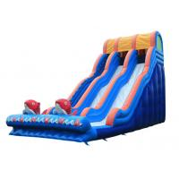 Wholesale Large Inflatable Slide Inflatable Water Slide  Party Slide For Kids and Adults from china suppliers