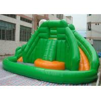 Wholesale Mini Commercial Inflatable Slide With Climbing Wall , Frog Style Inflatable Pool Slide from china suppliers