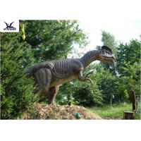 Wholesale Forest Decoration Handmade Dinosaur Garden Ornaments / Life Size Real Dinosaur Models from china suppliers
